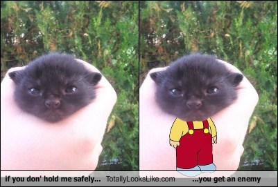 if you don' hold me safely... Totally Looks Like ...you get an enemy