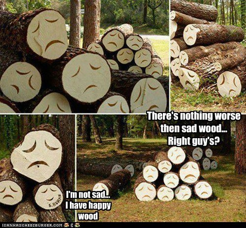There's nothing worse then sad wood... Right guy's?