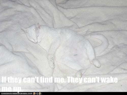 If they can't find me. They can't wake me up.