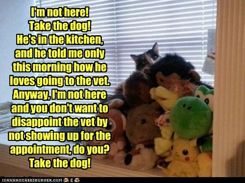 I'm not here! Take the dog! He's in the kitchen,  and he told me only this morning how he loves going to the vet. Anyway, I'm not here and you don't want to disappoint the vet by not showing up for the appointment, do you? Take the dog!