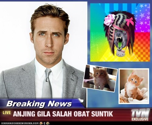 Breaking News - ANJING GILA SALAH OBAT SUNTIK