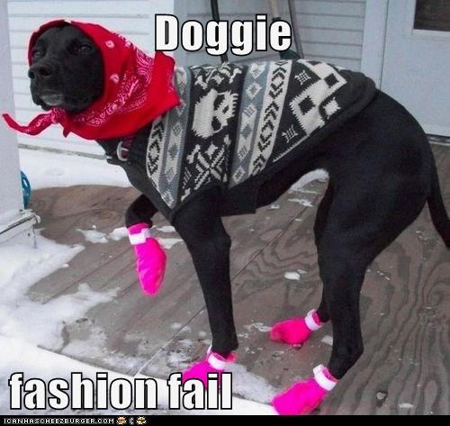 Doggie  fashion fail