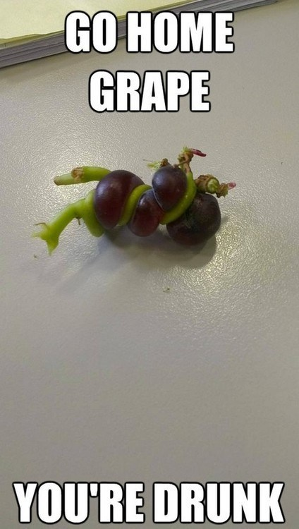 The Wraths of the Grape