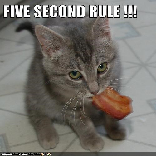 FIVE SECOND RULE !!!