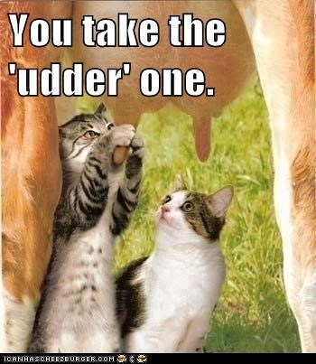 You take the 'udder' one.