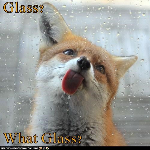 Glass?  What Glass?