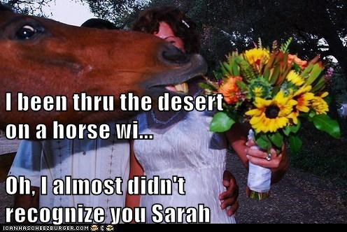 I been thru the desert                     on a horse wi... Oh, I almost didn't                             recognize you Sarah