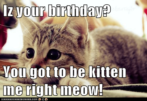 Iz your birthday?  You got to be kitten me right meow!