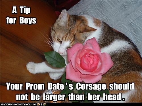 Prom Night Tip!