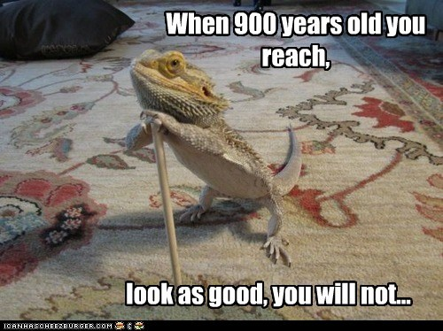 When 900 years old you reach,