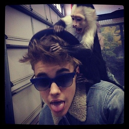 German Officials Threaten to Take Away Justin Bieber's Monkey