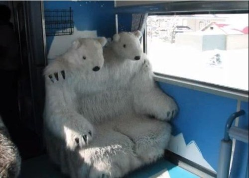 Take a Ride to the Zoo in Style!