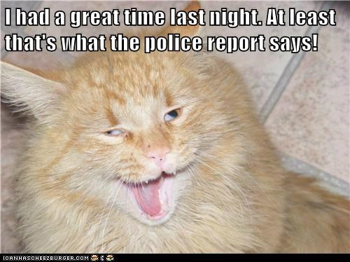 I had a great time last night. At least that's what the police report says!