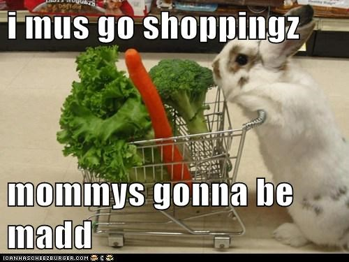 i mus go shoppingz  mommys gonna be madd