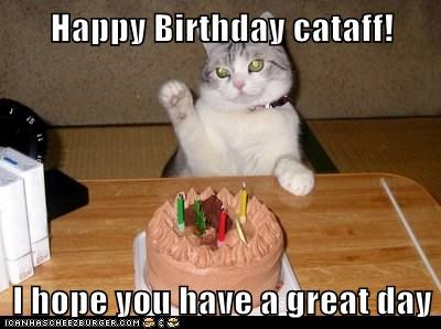 Happy Birthday cataff!  I hope you have a great day
