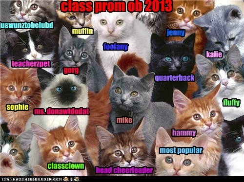 CLASS PROM PICTURE 2013