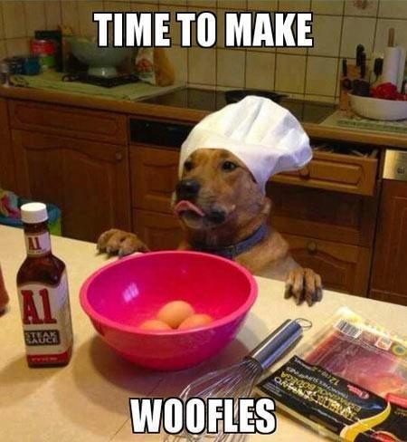 dogs,breakfast,puns,funny,waffles