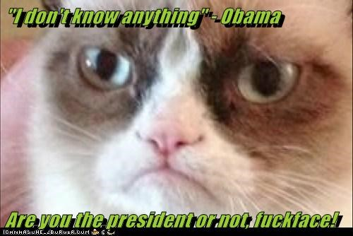 """I don't know anything"" - Obama  Are you the president or not, fuckface!"