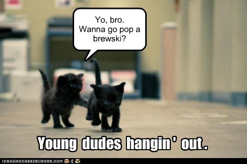 Young dudes hangin' out.