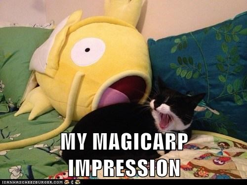 MY MAGICARP IMPRESSION