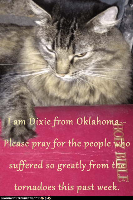 I am Dixie from Oklahoma--Please pray for the people who suffered so greatly from the tornadoes this past week.