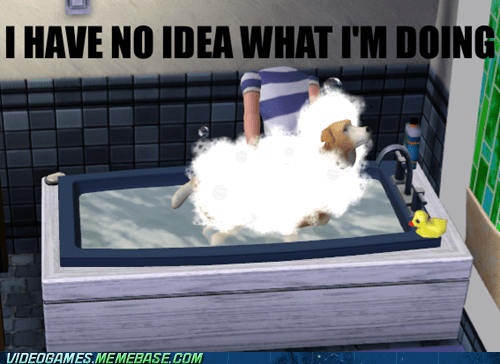 How Me a Sim Wash a Dog?