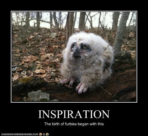 furbies,Fluffy,owls