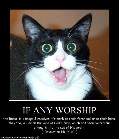 IF ANY WORSHIP