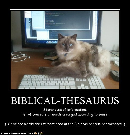 BIBLICAL-THESAURUS