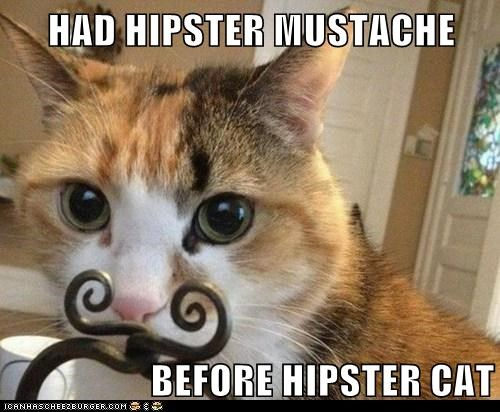 HAD HIPSTER MUSTACHE  BEFORE HIPSTER CAT