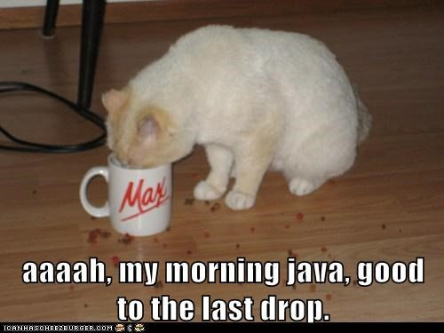 aaaah, my morning java, good to the last drop.