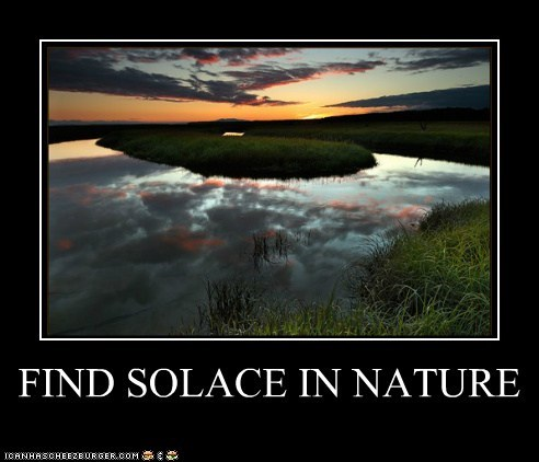 FIND SOLACE IN NATURE
