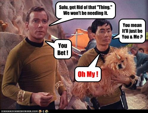 Sulu's Fantasy Dream