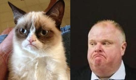 Grumpy Cat Totally Looks Like Toronto Mayor Rob Ford