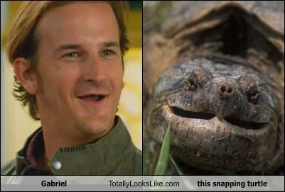 Gabriel Totally Looks Like This Snapping Turtle