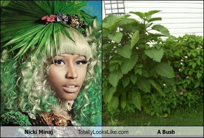 Nicki Minaj Totally Looks Like a Bush
