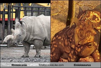 Rhinosceros Totally Looks Like Einioiosaurus