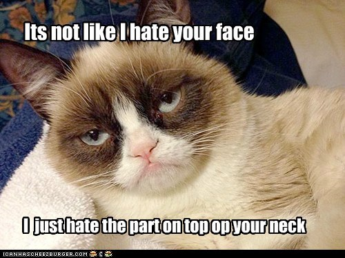 Its not like I hate your face
