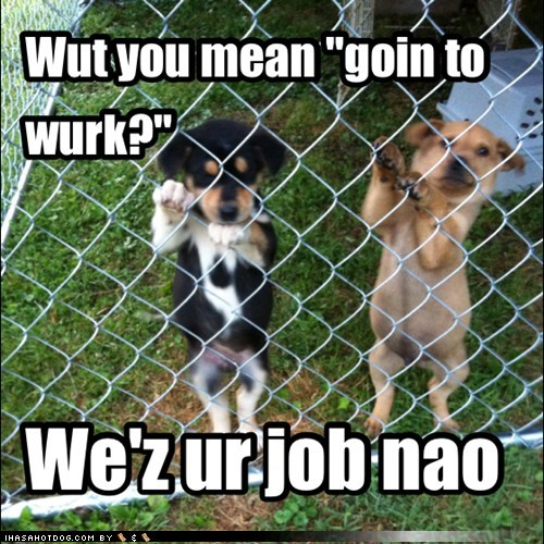 Pups Wave Master Off to Work
