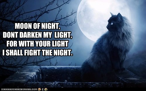 MOON OF NIGHT, DONT DARKEN MY  LIGHT, FOR WITH YOUR LIGHT I SHALL FIGHT THE NIGHT.