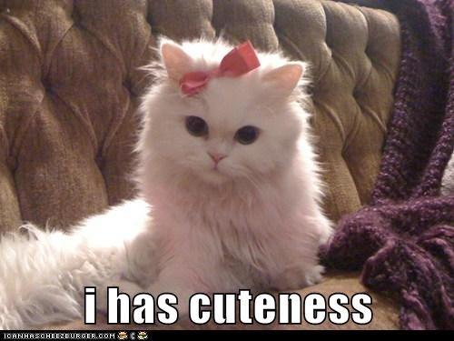 i has cuteness