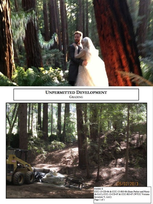 YOLO of the Day: Napster Co-founder's Wedding Accidentally Ruins Californian Forest