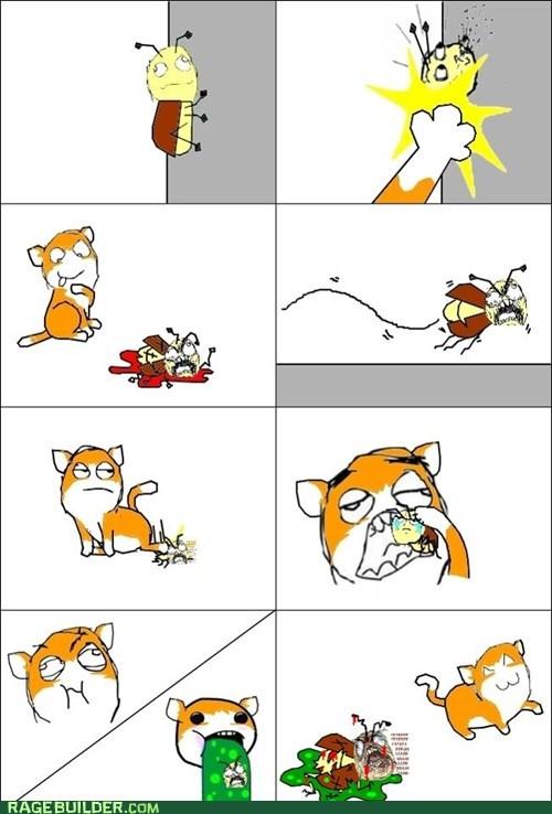 Scumbag Kitty