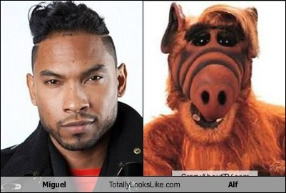 Miguel Totally Looks Like Alf