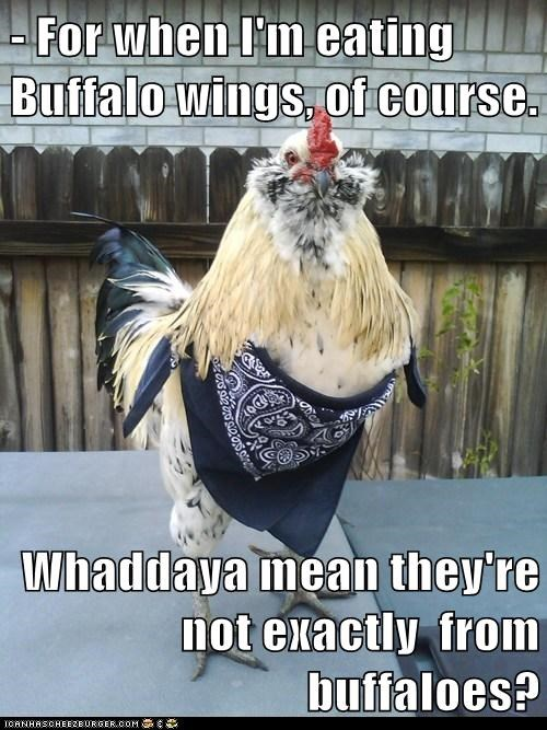 - For when I'm eating Buffalo wings, of course.  Whaddaya mean they're not exactly  from buffaloes?