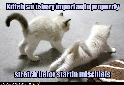 mischief,funny,stretch