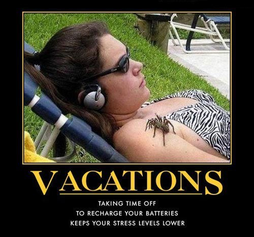 Now That's a Vacation
