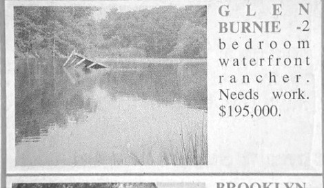 advertisement,for sale,DIY,funny,newspaper,fail nation,g rated