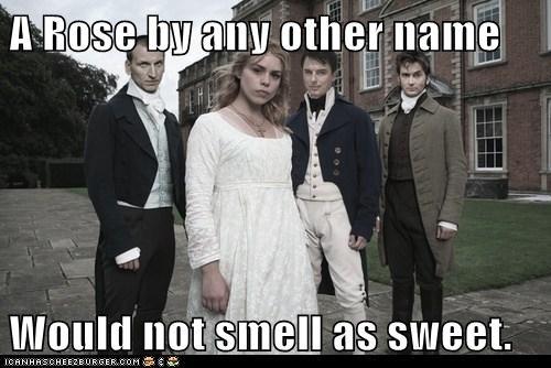 rose tyler,doctor who