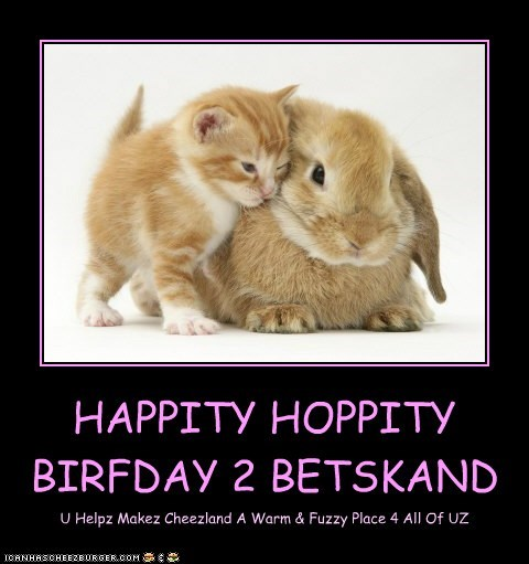 HAPPITY HOPPITY BIRFDAY 2 BETSKAND